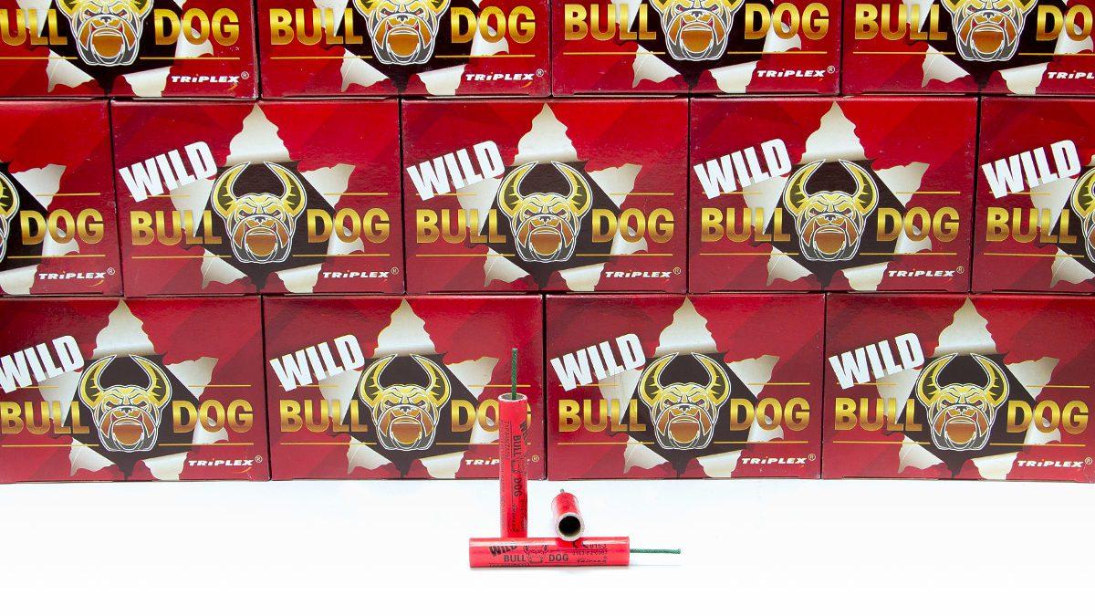 Wild Bulldog Firecracker